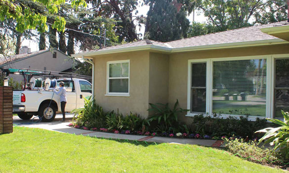 Pest Control Beverly Hills CA