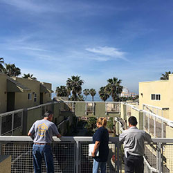 Termite Inspection in Santa Monica, CA, Thumbnail